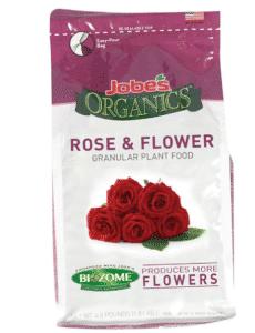 fertiliser les rosiers